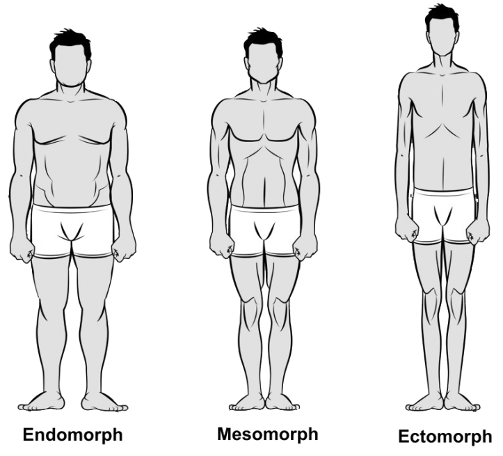 bodytypes-somatotype-fitness-exercise-appearance-healthhabits
