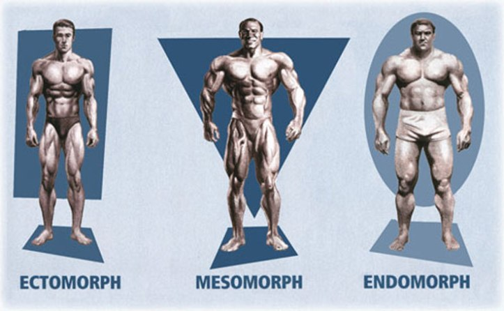 Somatotype-Men-fitness-exercise-muscle-healthhabits
