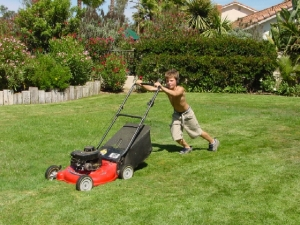 Mowing lawn, walk, power mower