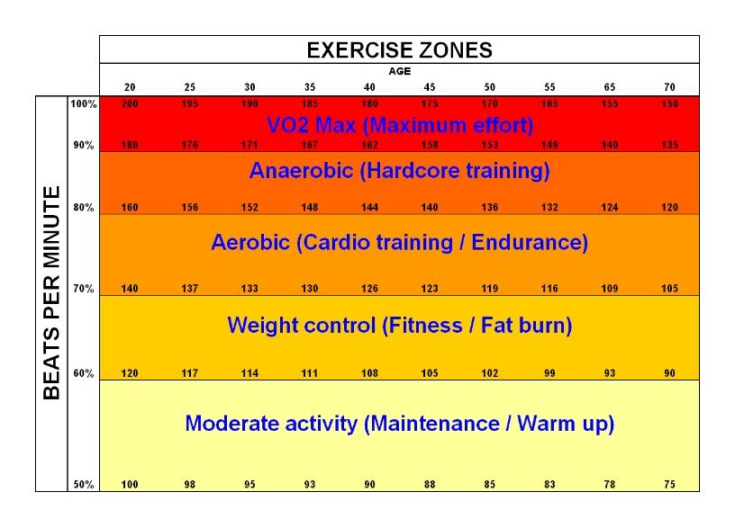 Increase metabolism aerobically