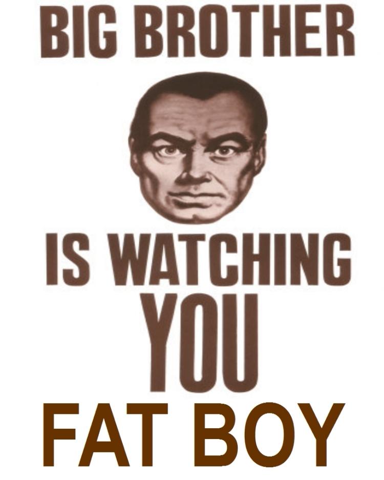 original big brother poster available at tomgpalmer.com