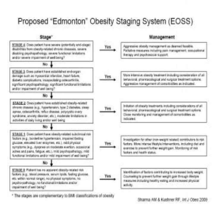 The Edmonton Obesity Staging System – @healthhabits