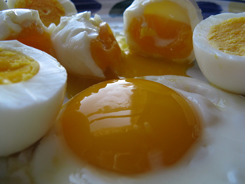 Weight Loss & Breakfast: Eggs are Better