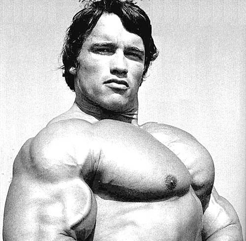 arnold-chest fitness exercise healthhabits bodybuilding
