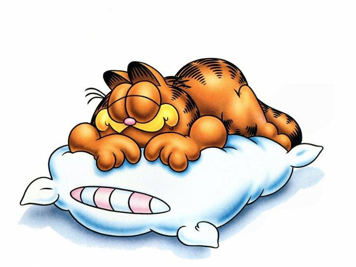 sleep garfield
