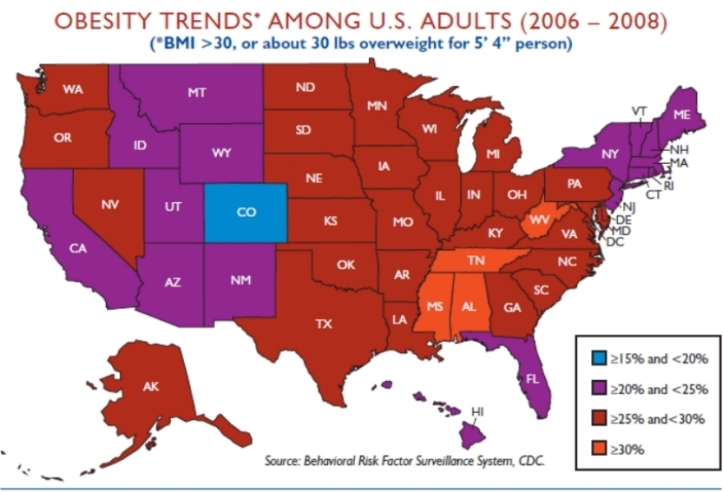 us - obesity stats 2008 map