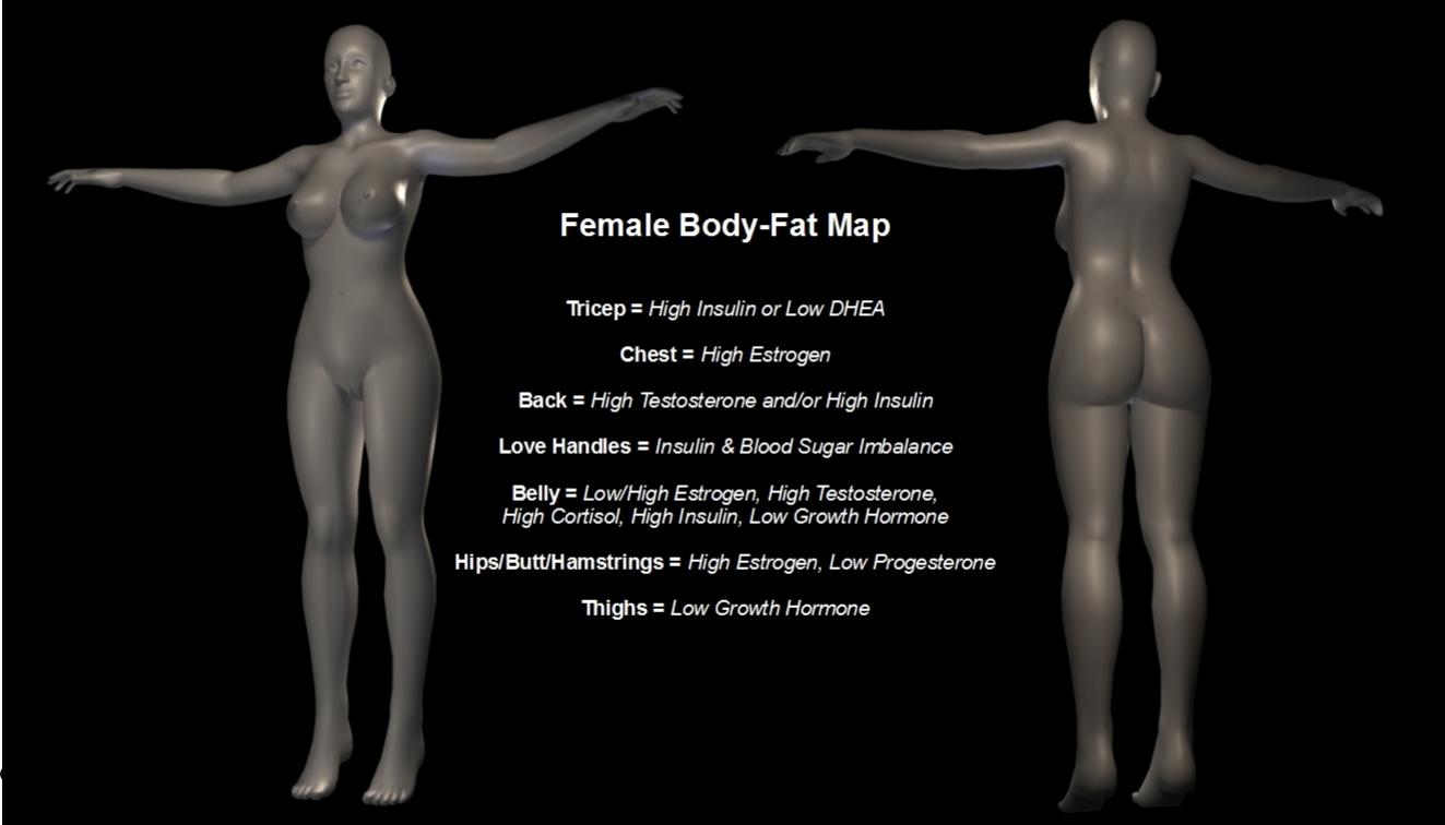 Male hormone in the female body