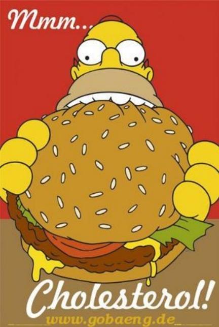 homer cholesterol