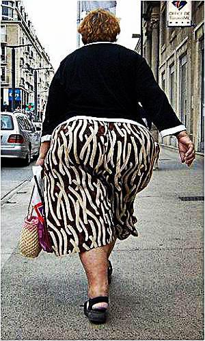 progesterone obesity