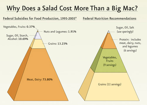 government food subsidies