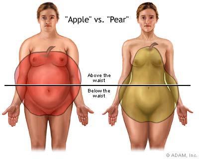 apple vs pear-health-obesity-appearance-bodyfat-fitness-healthhabits