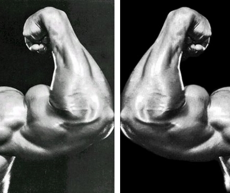 arnold duelling biceps fitness exercise healthhabits