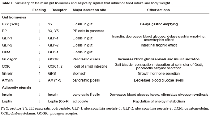 gut hormones and their effect on food intake and body weight
