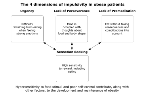 impulsivity and obesity