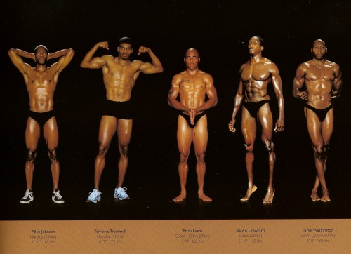 athletes - diff sizes and shapes 5