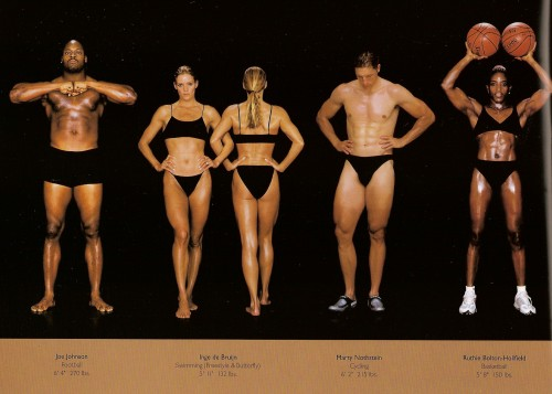 athletes - diff sizes and shapes 12