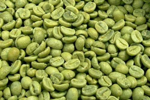 green-coffee-beans-web