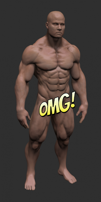 3d muscle avatar
