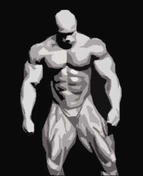 muscle-man