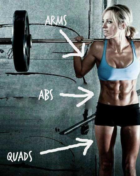 arms-abs-quads