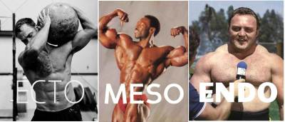 3-Faces-of-Muscle