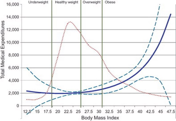 obesity costs